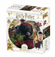 "3D Puzzle ""Harry Potter"" Hogwarts Express 300 Teile"